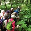 【10/18】現地集合「自然森林教室」